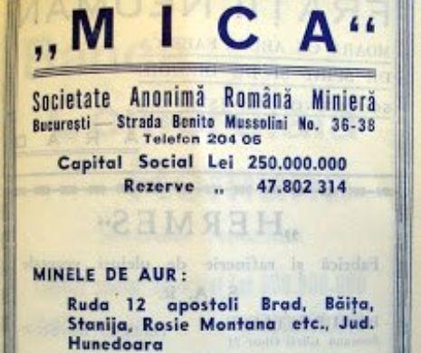 AURUL României în perioada INTERBELICĂ, Societatea MICA și Octavian GOGA
