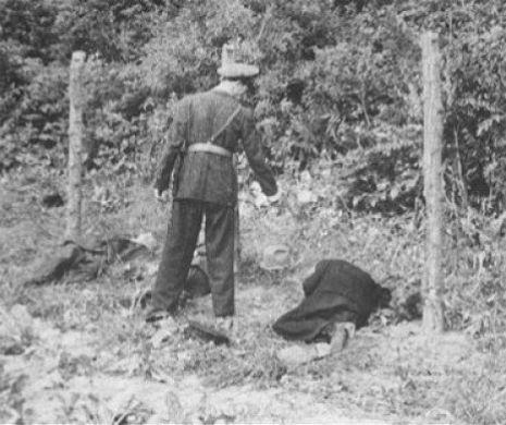 Ultima noapte de libertate a Mareșalului Antonescu, văzută prin ochii șefului spionilor săi. Marea Spovedanie (7)