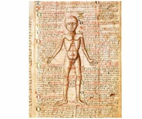 Răceală sau dureri de stomac? 8 remedii naturiste neobișnuite din epoca medievală