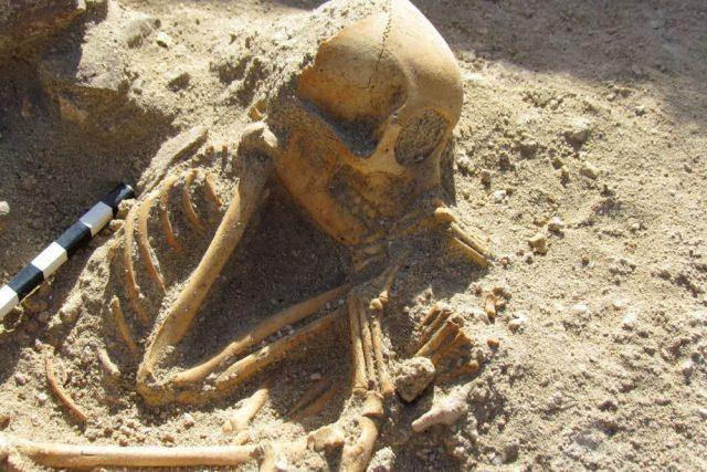 Romanii își aduceau animale de companie de peste mări și țări și le înmormântau ca pe bebeluși. Descoperire de senzație