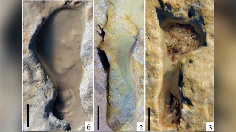 Urme ale unor copii de Neanderthal care se hârjoneau pe plajă acum o mie de secole